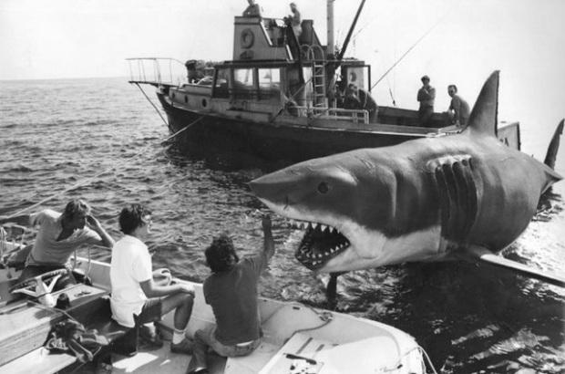 Er werden drie mechanische haaien gemaakt voor de productie van deze film.