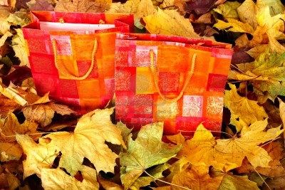 10701893-group-of-shopping-bag-in-fall-foliage-autumn-holiday