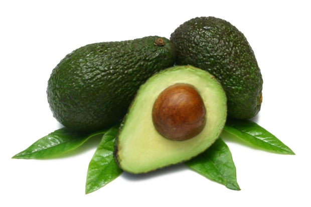 avocado-and-leaves