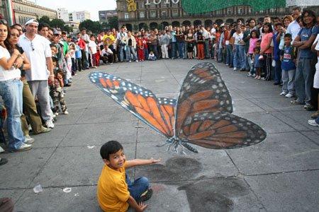 Edgar-Mueller-Butterfly