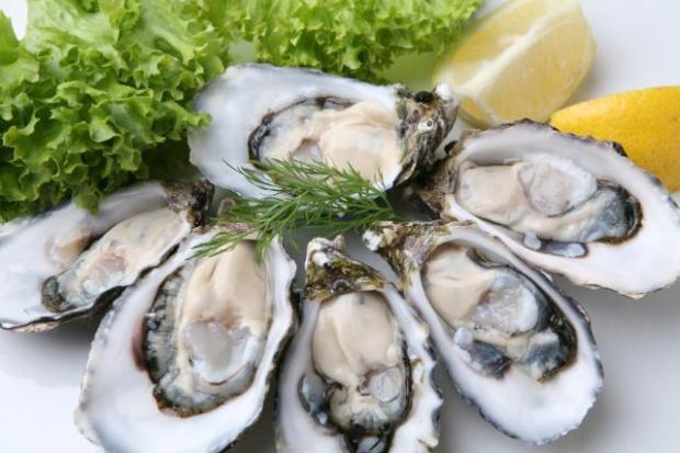 oysters-iron-food-source