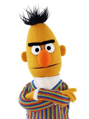 Bert en zijn unibrow