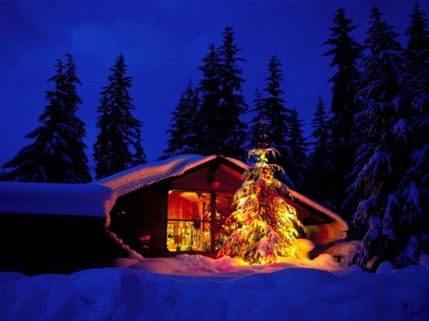 christmas-cabin-and-tree-in-deep-snow