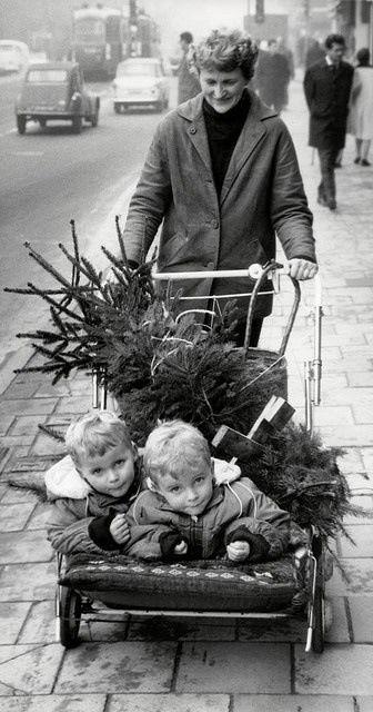 Taking home that Christmas tree! Jaren 50.