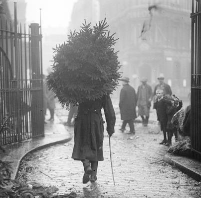 Met de kerstboom onderweg naar huis, Chelsea, London ,1915