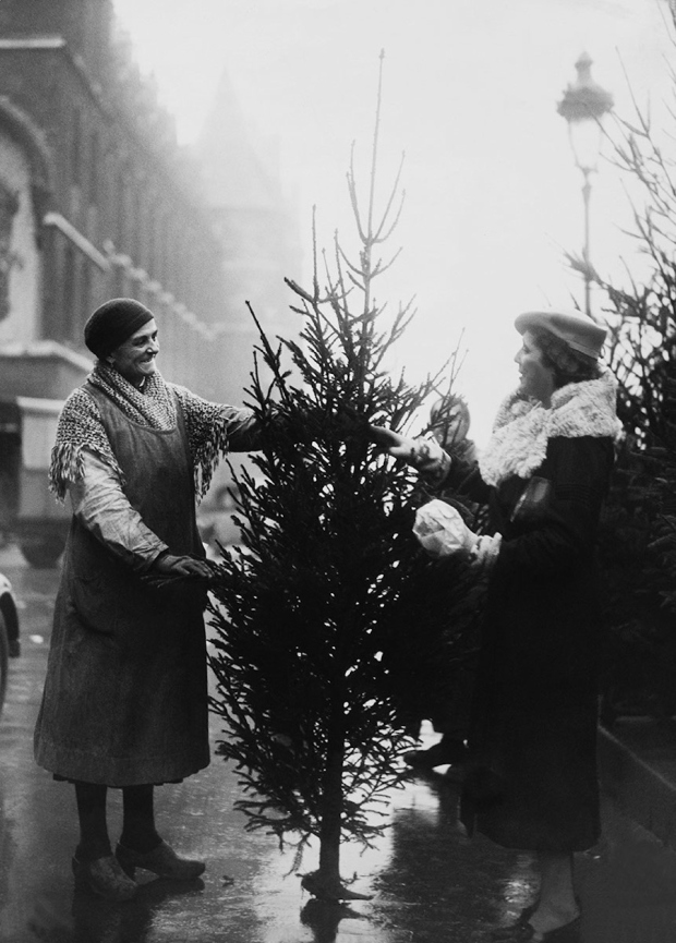 Kerstboom kopen, 1933.