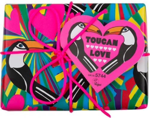 Toucan_love-500x500